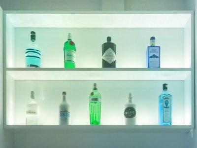 gin-regal-2